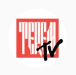 """логотип канала """"ТЕРЕМ TV"""""""