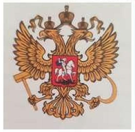 Герб России с ошибкой